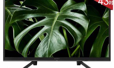 SONY 43吋 FHD HDR智慧連網液晶電視 KDL-43W660G